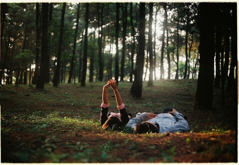 THEY PULLED UP AND LAY ON THE GRASSY ENVIRONMENT AS THEY ENJOYED THE SWEET, CHILLY AND COOL AIR