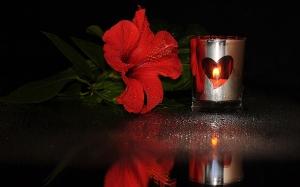 3d-abstract_widewallpaper_romance_50590