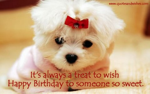 TRULY, ITS A PLEASURE TO WISH YOU HAPPY BIRTHDAY