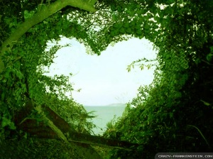 THAT HIDEOUT IN NATURE THAT STOLE YOUR HEART AND YOU WANNA STAY CLOSE TO IT