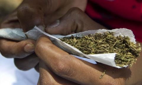 bhang had become a staple food